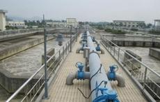 镇领导督导望洪污水处理厂提标改造工程建设工作