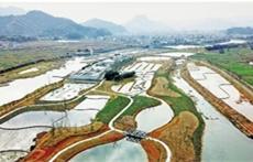 污水处理厂提标改造过程中各项标准的要求情况