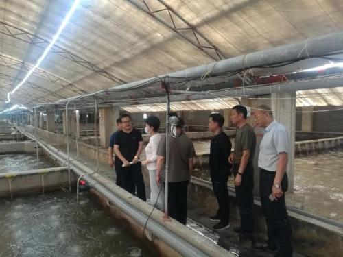 寿光市委领导现场考察海之鲜养殖场,并做出重要指示