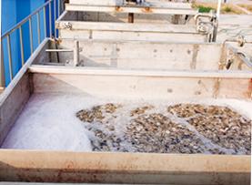 水产养殖尾水